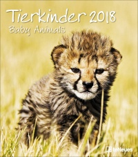 Calendario Tierkinder 2018 - Baby Animals