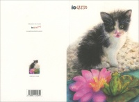 Iogatto Card - Gatto & Rana