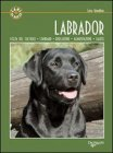 Labrador (eBook)