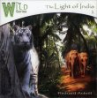 The Light of India Richard Ackrill