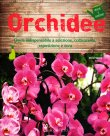 Orchidee David Squire