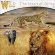 The Heart of Africa Wychazel