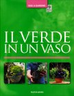 Il Verde in un Vaso Richard Rosenfeld