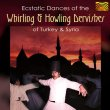 Whirling and Howling Dervishes