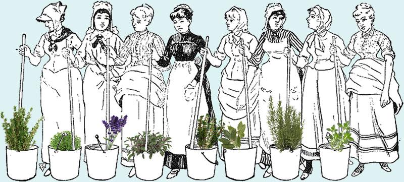 Domestiche Di Lesbiche A Contrastare La Cucina