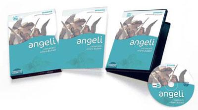 videocorso in DVD Angeli - Conoscerli e farsi aiutare