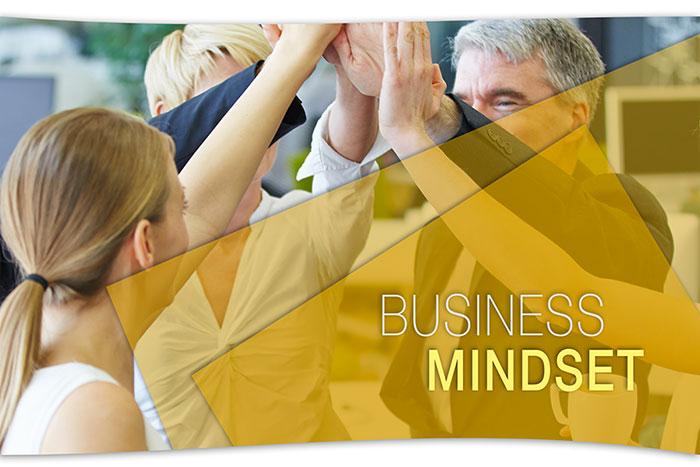 Business Mindset - Formazione Video)