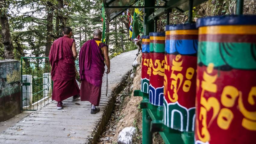dalai-lama-libri