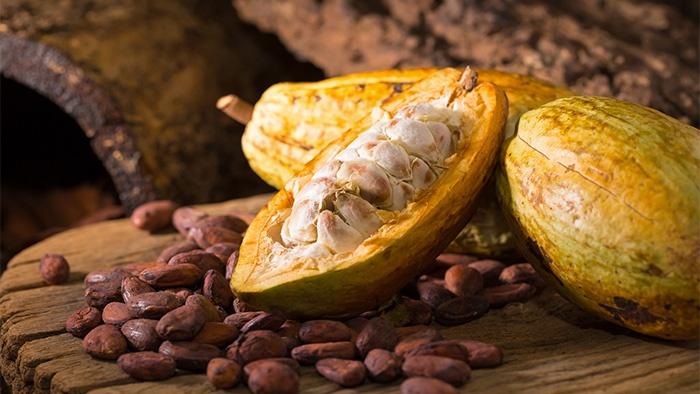 Fave di Cacao Crudo