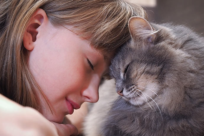 Gatti e Pet Therapy