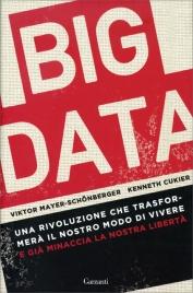 BIG DATA Una rivoluzione che trasformerà il nostro modo di vivere e già minaccia la nostra libertà di Viktor Mayer Schönberger, Kenneth Cukier