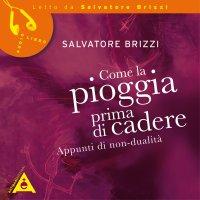 COME LA PIOGGIA PRIMA DI CADERE (AUDIOLIBRO MP3) Appunti di Non-Dualità di Salvatore Brizzi
