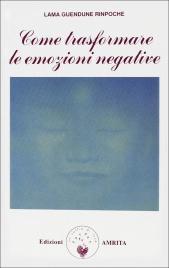 COME TRASFORMARE LE EMOZIONI NEGATIVE di Lama Guendune Rinpoche