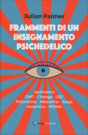 FRAMMENTI DI UN INSEGNAMENTO PSICHEDELICO Ayahuasca - DMT - Changa - LSD - Psilocibina - Mescalina - Iboga - Ketamina - MDMA di Julian Palmer