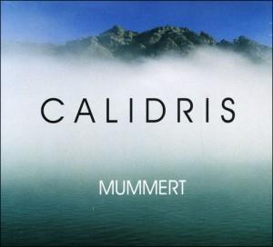 CALIDRIS di Mummert