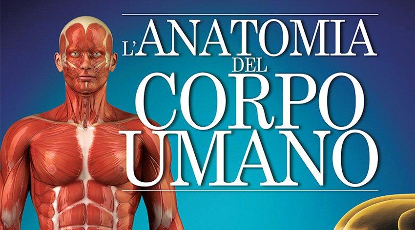 L'Anatomia del Corpo Umano - Bis