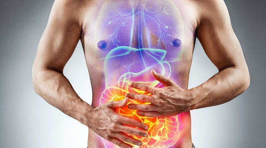 barriera-intestinale